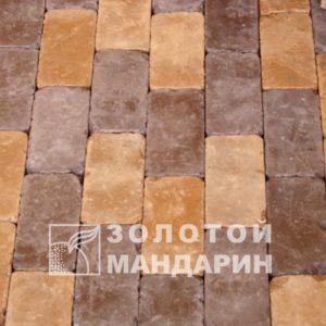 rotterdam (2)-500×500