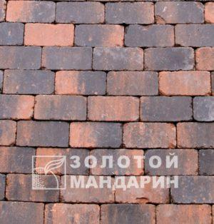rotterdam (5)-861×900 (1)